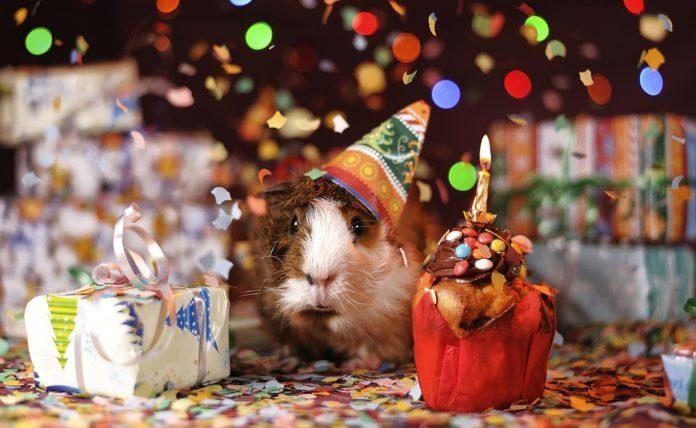 Auguri Di Buon Compleanno Simpatici Divertenti E Originali